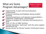 what are some program advantages