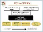 ucla cpcrn