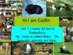 hi i am caitlin