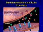 methamphetamine and brain chemistry2