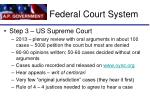 federal court system1