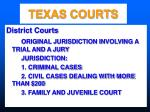 texas courts