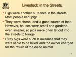 livestock in the streets