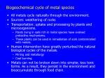 biogeochemical cycle of metal species