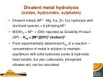 divalent metal hydrolysis oxides hydroxides sulphates