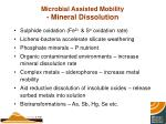 microbial assisted mobility mineral dissolution