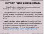 krzywizny fizjologiczne kr gos upa1