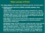 major groups of pests