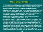 major groups of pests19