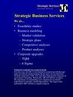 strategic business services