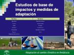 estudios de base de impactos y medidas de adaptaci n