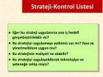 strateji kontrol listesi