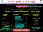 major effects of stress
