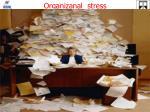 organizanal stress