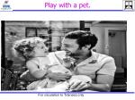 play with a pet