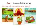 jiva 1 sense living being