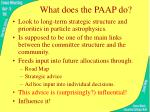 what does the paap do