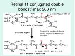 retinal 11 conjugated double bonds max 500 nm