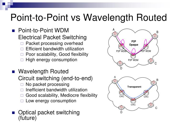 point to point vs wavelength routed n.