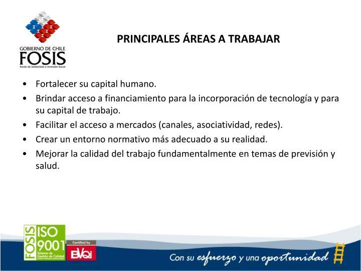PRINCIPALES ÁREAS A TRABAJAR