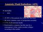 amniotic fluid embolism afe1