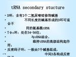 trna secondary stucture