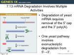 7 13 mrna degradation involves multiple activities