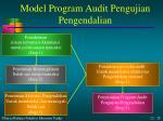 model program audit pengujian pengendalian