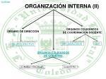 organizaci n interna ii