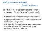 performance framework output indicators3