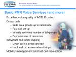 basic pmr voice services and more