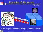 examples of file access object level1