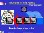 examples of file access whole file transfer1