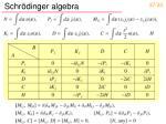 schr dinger algebra