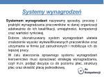 systemy wynagrodze
