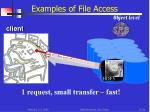 examples of file access object level