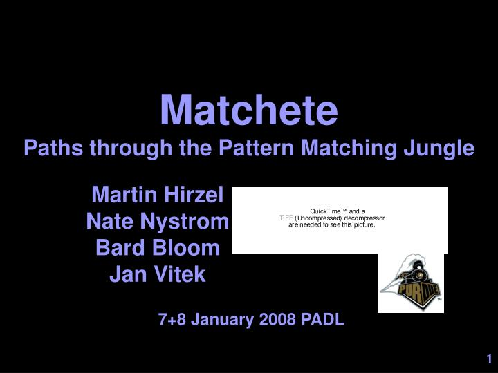 matchete paths through the pattern matching jungle n.