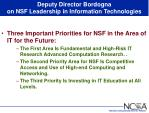deputy director bordogna on nsf leadership in information technologies