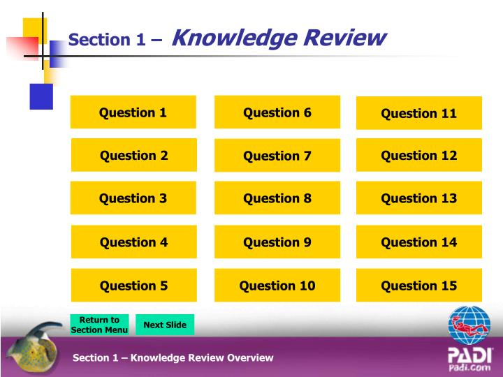 section 1 knowledge review n.