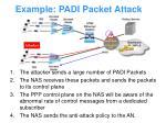 example padi packet attack