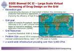 egee biomed dc ii large scale virtual screening of drug design on the grid