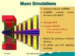 muon simulations