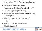 issues for the business owner