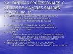 xv familias profesionales y ciclos de mayores salidas laborales ii