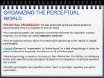 organizing the perceptual world