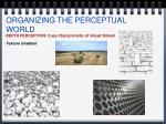 organizing the perceptual world10