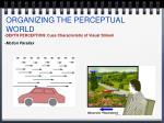 organizing the perceptual world11