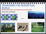 organizing the perceptual world12