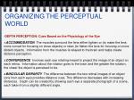 organizing the perceptual world14