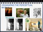 organizing the perceptual world22